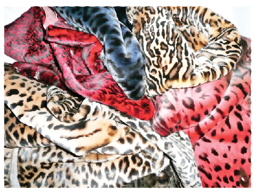 The amount of value added to seal skins as a fur product, is beyond belief. All these different faux pas furs are actually based on real fur - that of the Cape Fur Seal. Seal skins come from seals harvested from the colonies along the Namibian coastline. From a population of well over one million animals, the seal trade removes some 80,000 animals annually. The cull has no effect on overall numbers.