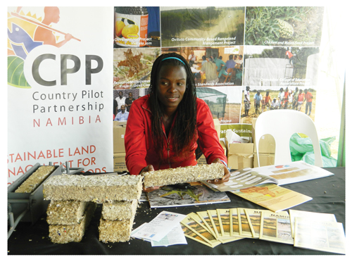 Ottile a sales person for the Paper Block Project, explaining the properties of a paper block at her stand at the Katutura Central Expo that was held recently.(Photographed by Melba Chipepo)