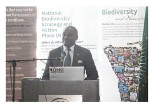 Deputy Minister of Environment and Tourism, Pohamba Shifeta speaking at the oficial opening of the second National Biodiversity Strategy and Action Plan workshop (Photograph by Bryn Canniffe).
