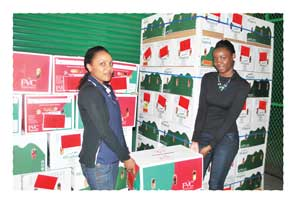 Shange Newaka and Penny Efraim of Bank Windhoek assisting with the distribution of the apples sold in this year's Cancer Apple Project.