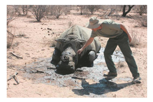 Large commercial sponsors invaluable to keep Kunene's black rhinos alive