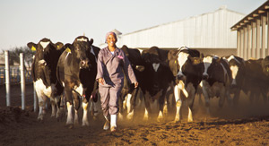 !Aimab Superfarm dairy darling, Katrina Links with her beloved Friesland milk cows. She and her cows are the stars in a new advertisement for Namibia Dairies which communicates the message of milk's intrinsic benefits for consumers.