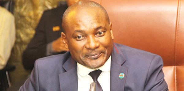 Namibia's wildlife status is firm- Shifeta