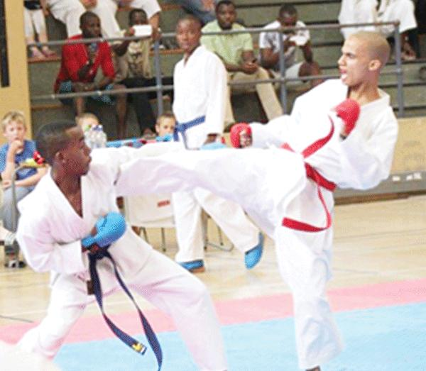 Ilustration of karateka at a previously held tourney