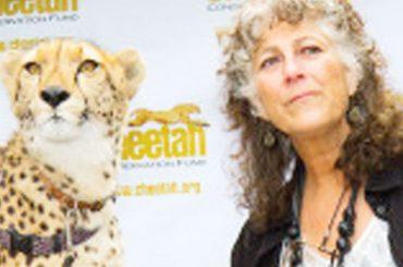 Cheetahs makes it to CITES