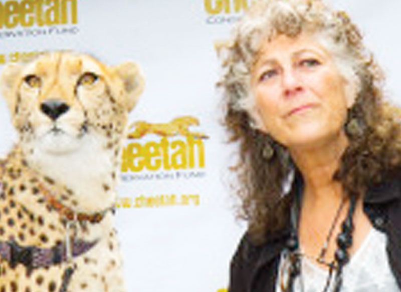 Ever eaten a cheetah cookie? Visit the Cheetah Foundation over the weekend and find out what a cheetah tastes like