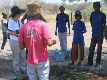 Bushmen settlers at Nyae Nyae grow own vegetables