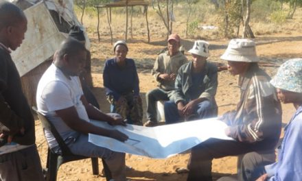 Bushmen use fire as a management tool to improve grazing