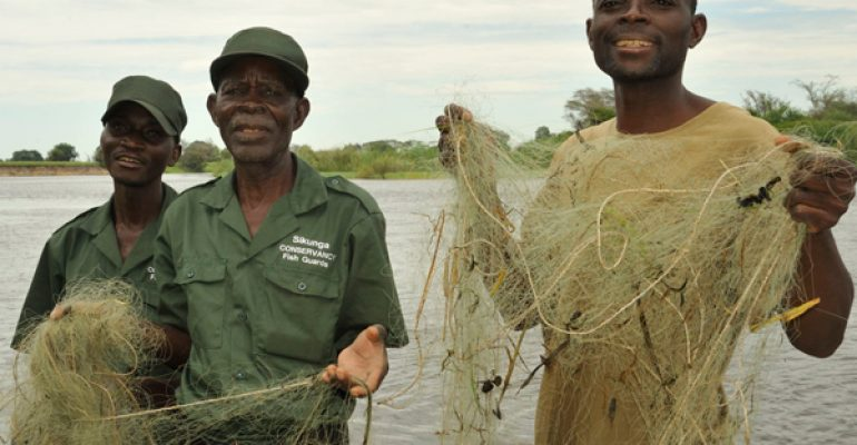 New regulations protect Caprivi fisheries