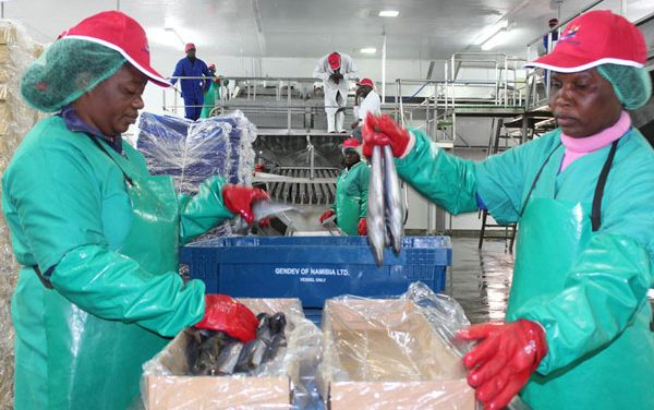 Low fish stocks lead to job losses