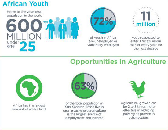 Youth agripreneurs to converge in Kigali