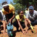 Climate kick players show learners why ecosystem depends on trees