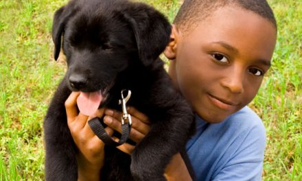 Family pets boost social skills and self-esteem in children