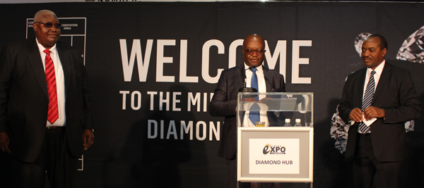 Government continues to support growth of downstream diamond beneficiation