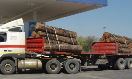 Timber trucks impounded in Zambia crippling local logistics industry