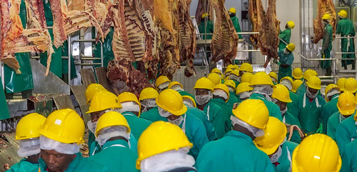 Meatco-produced beef remains of premium value