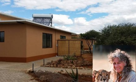 Want to see and feel the work of the Cheetah Conservation Fund, book their new lodge