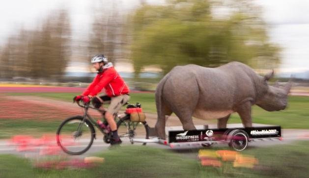 Buy a raffle ticket, help keep a rhino alive