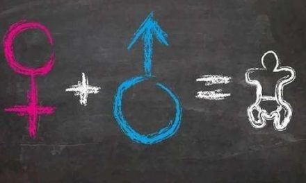 Parliament embarks on sex education in regions