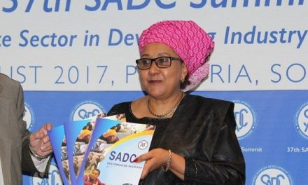Plenty of green shoots at SADC Summit in Pretoria
