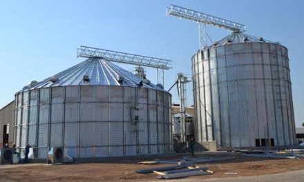 Namib Mills gives clarity on shortage of silo facilities