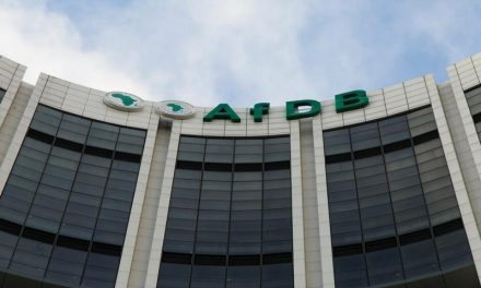 AfDB loan and private sector borrowings push external debt higher- PSG Konsult