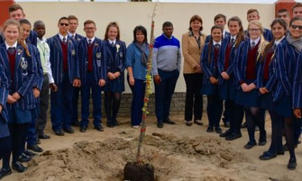 Local bank deepen their roots by planting trees