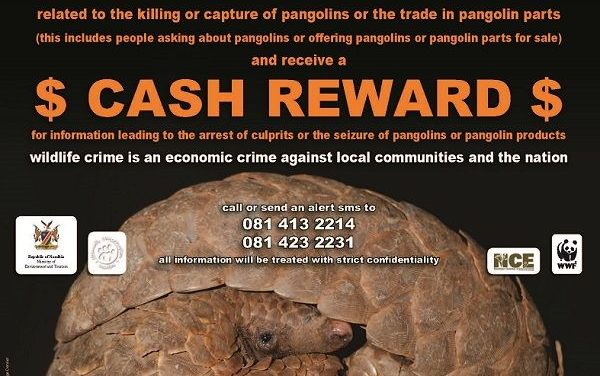 Cash reward for information leading to capture and conviction of wildlife criminals
