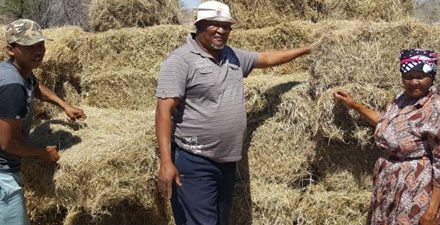 Agricultural Union assists resettled farmers with required fodder for livestock