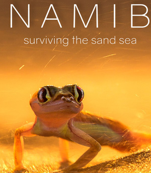 New desert documentary shows why Namib Sand Sea is a World Heritage site