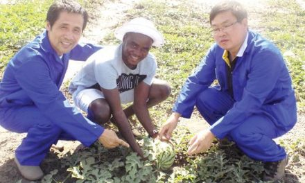 Namibia to cooperate further with China in the agricultural sector