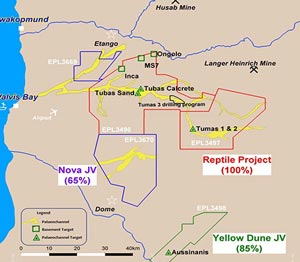 Deep Yellow commences with drilling exercise at Reptile Project