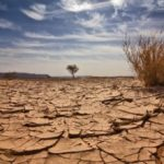Hoebes welcomes UN's US$1 million boost to fight climate change, drought