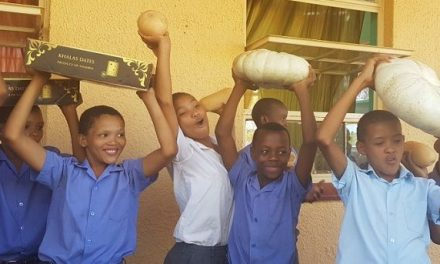 Balanced diet key to good learning – date grower sends fresh veggies to Karas schools