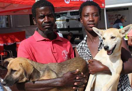 Spay Day campaign treats over 60 stray animals in Okahandja