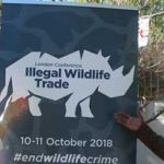 British High Commission celebrates Queen's birthday by tackling illegal wildlife trade