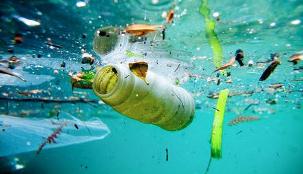 Namibia to take action on plastic pollution through Marine Ecosystem Programmes
