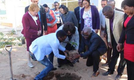 Nation continues to address desertification and land degradation issues