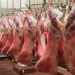 Meat Board contributes towards export certification of livestock and meat