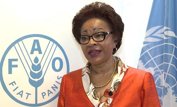 AU Commissioner reveals Africa's first food-loss prevention strategy at 73rd session of UN General Assembly