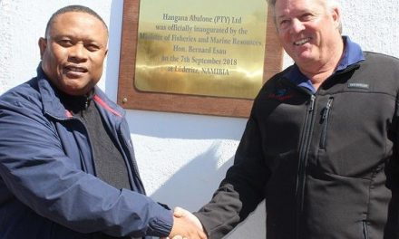 Fresh cold seawater, financing and expertise combine to establish new mariculture industry in Lüderitz