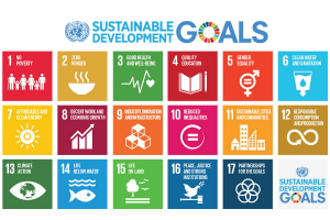 Sustainable Development Goals to be introduced to youth in the North