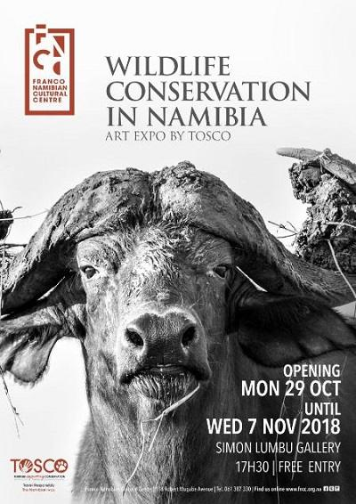 Art exhibition dedicated to wildlife conservation at Franco Namibian Cultural Centre gallery