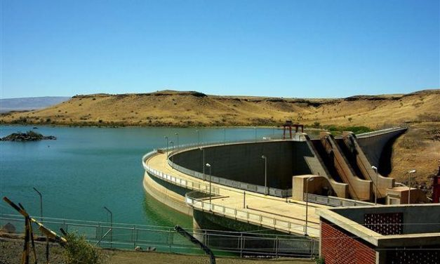 Only one third of water left in dams – Meatco