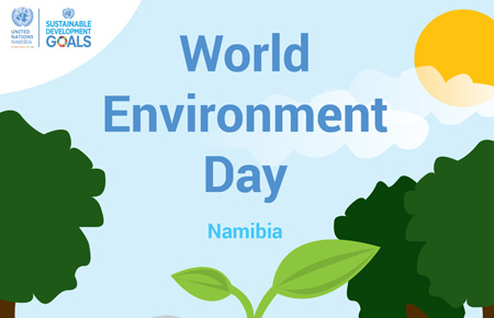 UN calls on Namibia to explore renewable energy and green technologies