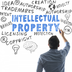 Business and Intellectual Property Authority takes proactive step towards intellectual property protection