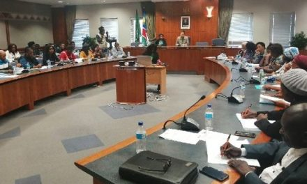 ICT ministry asks rural women parli what must be done to harness the power of technology for rural communities