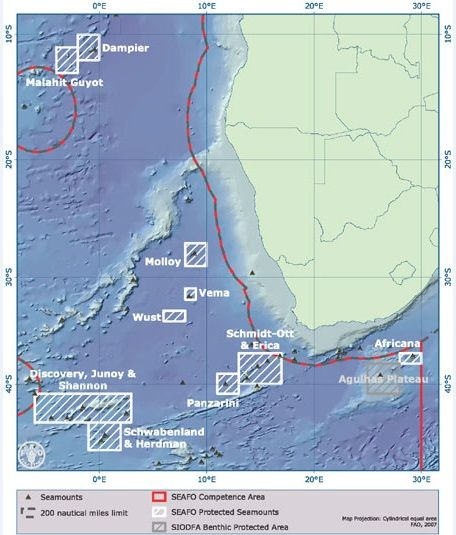 Vema Seamount in the south-east Atlantic teems with life, Greenpeace mission reports after exploration