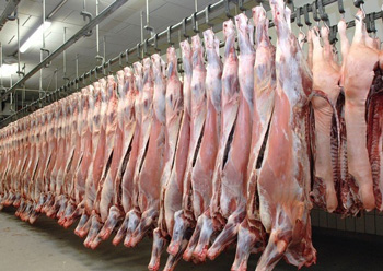 Katima Mulilo abattoir expected to be operational in February next year