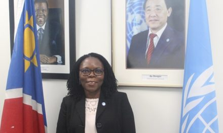 The FAO at a glance – Namibia Country Representative provides overview of activities and goals